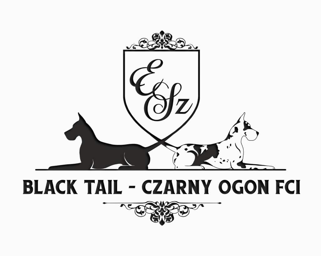 Black Tail – Czarny Ogon FCI